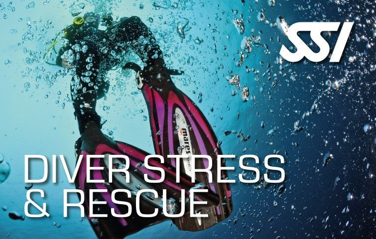 SSI Diver Stress Rescue | SSI Diver Stress Rescue Course | Diver Stress Rescue | Specialty Course | Diving Course | Eko Divers